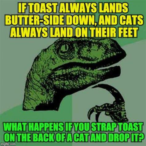 Meme Meme Tekel Upharsin - toast memes 28 images toast memes best collection of funny toast pictures leonardo dicaprio