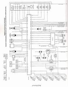 Vs V8 Commodore Ecu Wiring Diagram    Reviewtechnews Com