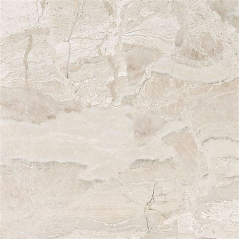 shop bermar royal beige honed marble floor