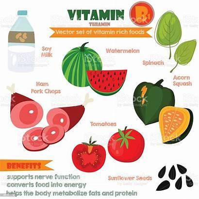 Minerals Vitamins Foods Illustration Vector Illustrator Vita