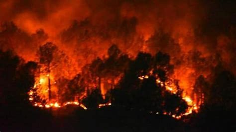 Massive Forest Fire In Uttarakhand Causes Damages Worth