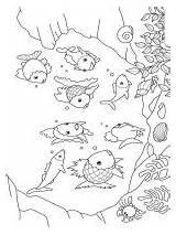 Coloring Underwater Bright Choose Colors Favorite sketch template