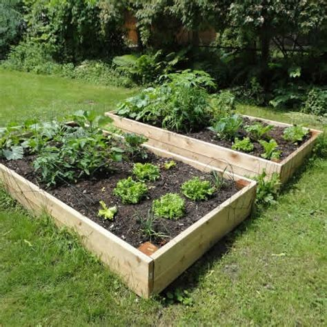 Raised Garden Beds  8ft X 4ft Tanalised Timber