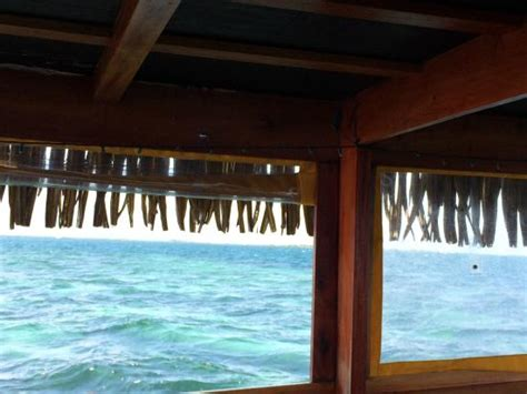 Glass Bottom Boat Tours Belize by Front View Picture Of Sea N Belize Glass Bottom Boat