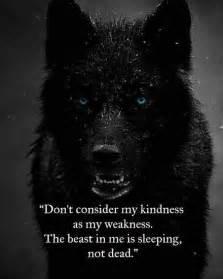 wolf sprüche die besten 25 wolf zitiert ideen auf krieger zitate zitate eigenbrötler und krasse