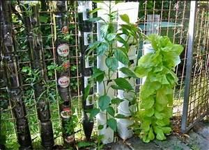 Pflanzen Bewässern Mit Plastikflasche : natur tut gut septiembre 2012 ~ Markanthonyermac.com Haus und Dekorationen