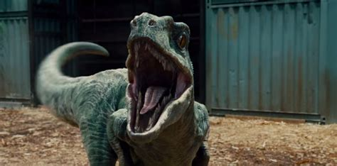 Jack Horner Is Making A 'chickenosaurus'