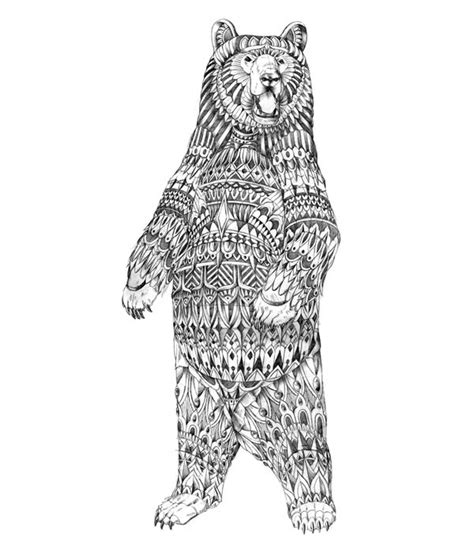 bear drawing   clip art  clip art