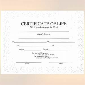 baby death certificate template ba death certificate With baby death certificate template