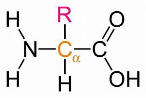 What Is The Chemical Formula For Amino Acids