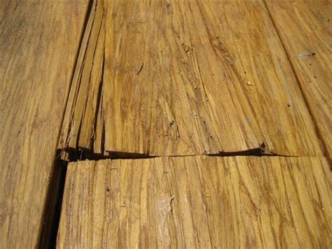 calibamboo reviews ripoff report cali bamboo complaint review san diego california
