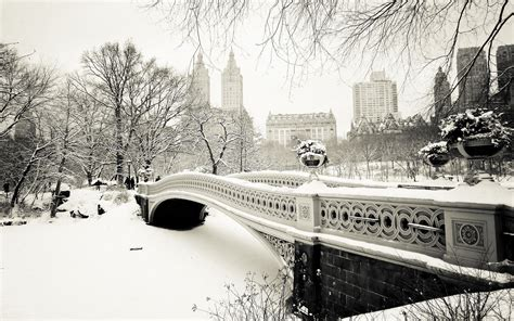 Central Park Winter Iphone Wallpaper by Winter In Central Park Wallpaper Wallpaper Winter