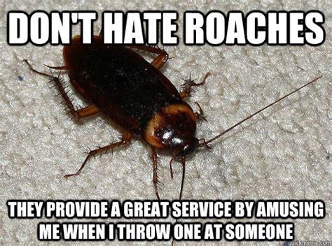 Roach Meme - scumbag cockroach memes quickmeme