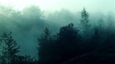 Desktop Backgrounds Hd Nature Winter Foggy Forest Wallpapers Hd Pixelstalk Net