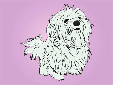 cute breed dog cartoon animal vector