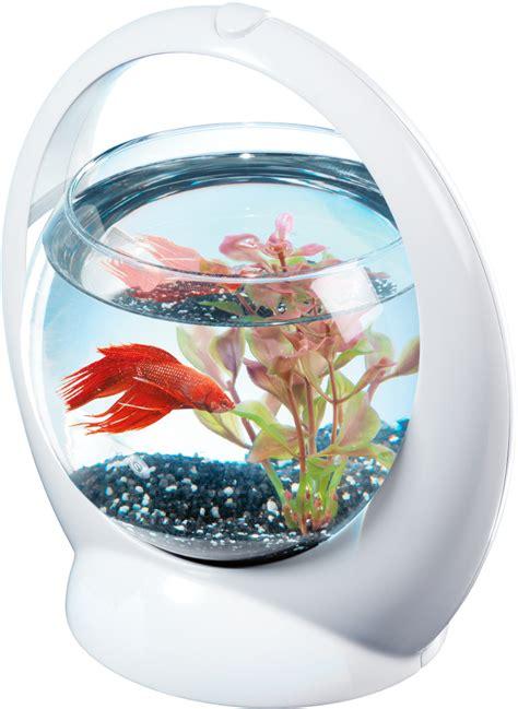 luminaire cuisine but aquarium boule design poisson combattant