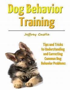 dog behavior training tips and tricks to understanding With dog behavior training tips