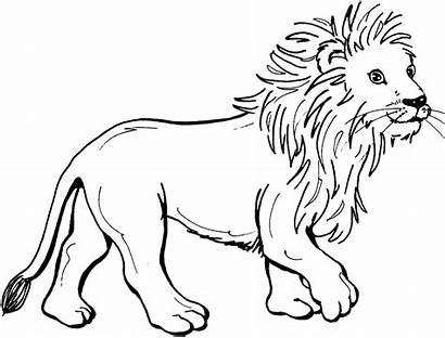 Lion Coloring Pages Lions Cut Face