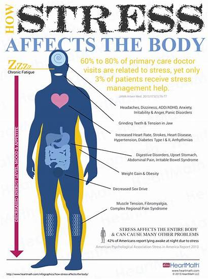 Stress Affects Heartmath Health Heart System Immune
