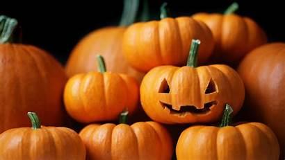 Pumpkin Desktop Wallpapers Pumpkins Backgrounds Helloween Without