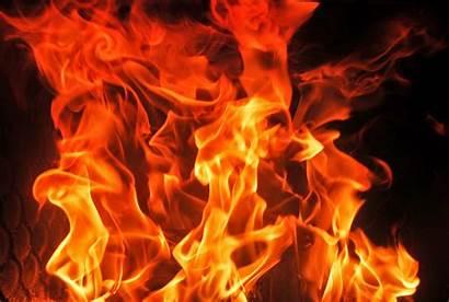 Api Gambar Membara Keren Merah Harimau Puisi
