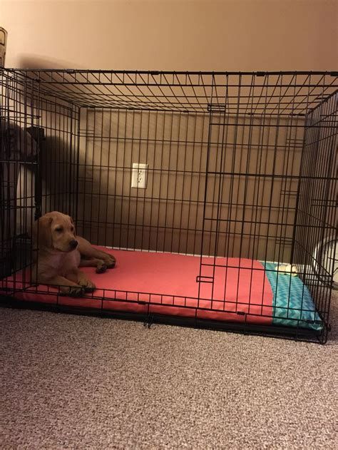 diy dog crate bed    full size foam mattress pad