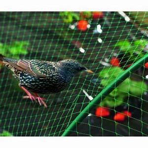 Filet Pour Arbre Fruitier : filet de protection oiseau 2 x 10 m castorama ~ Melissatoandfro.com Idées de Décoration