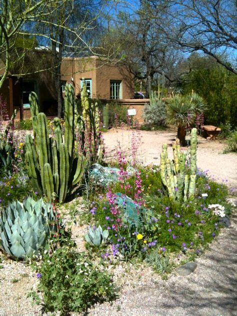 tucson botanical gardens why tucson on programs roads and