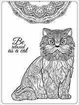Coloring Cat Pages Adults Sheets Relaxing Animals Cats Printable Mandala Adult Decorative Google Elena Nature Pet Driveng Docs Sign Christmas sketch template