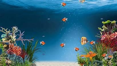 Aquarium Rainwallpaper Animated Deskscapes Adni18 Animation