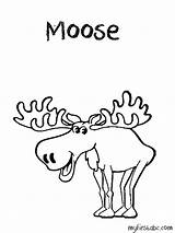 Moose Coloring Pages Head Colouring Antlers Clip Template Popular Coloringhome Library Clipart Cartoon sketch template