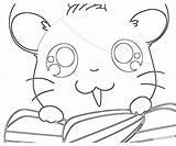 Coloring Hamtaro Ham Pages Printable Library Clipart Popular Hams Seeking Unite Line sketch template