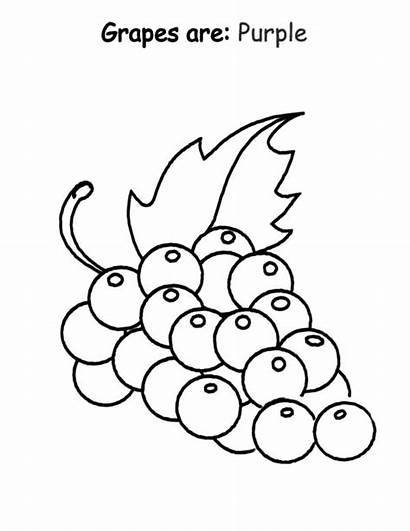 Purple Coloring Grapes Pages Preschool Draw Printable