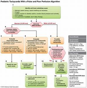 32 Info Flow Chart Heart Pdf Doc Ppt Download Xls
