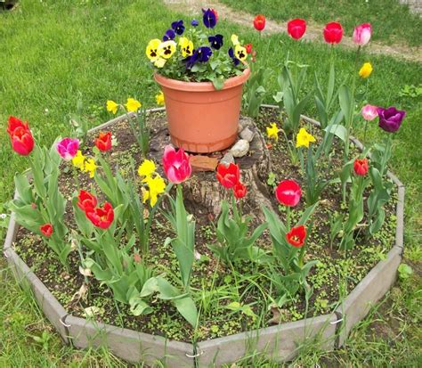 how to make flower beds that will beautify your yard