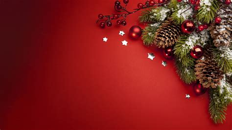 wallpaper fir tree christmas  year holidays