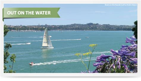 Boat Trip Distance Calculator by Out On The Water Nz Boat Trips Aa Travel