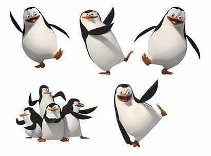 Madagascar Penguins Clipart Transparent Animation Pinguine Clip