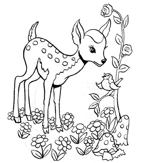 pet photo albums coloriage de foret az coloriage