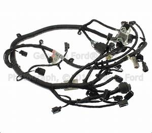 Brand New Genuine Ford Oem Engine Wiring Harness