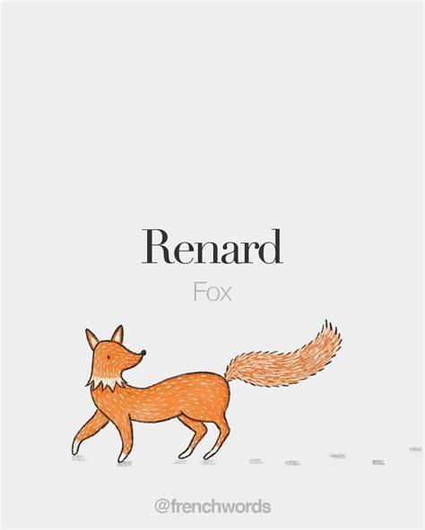 Renard (masculine word) • Fox • /ʁə.naʁ/ Illustrated by ...