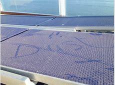Cruise Ship Passengers Protest Maintenance Activity