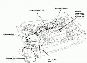 2005 Honda Civic Lx Engine Diagram