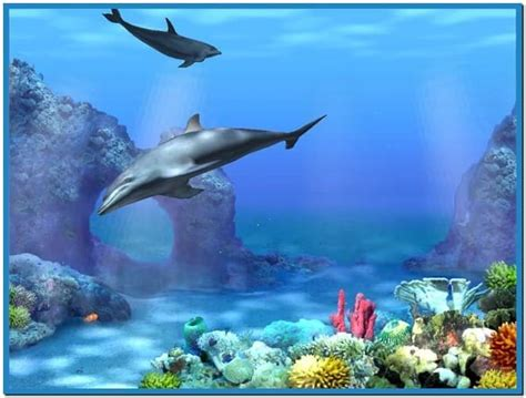 Living 3d Dolphins Animated Wallpaper - live 3d dolphin screensaver free