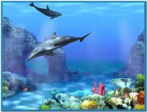 Live 3d dolphin screensaver - Download free