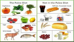 Paleo Diet Caveman Diet Review Foods List And More - Share The ... Diet Products