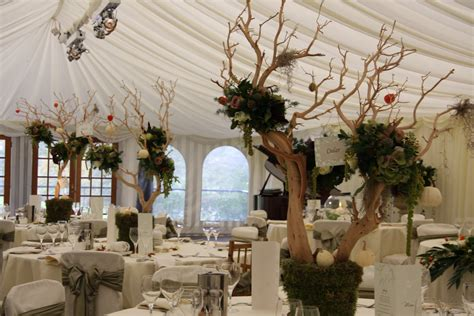 Enchanted Forest Theme  Wedding Forum  You & Your Wedding