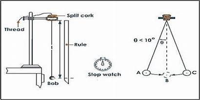 Pendulum Simple Measurement Lab Photogate Timer Physics