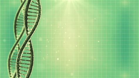 stock video  looping science green background  dna