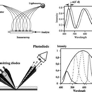 The principle of reflectometric interference spectroscopy ...